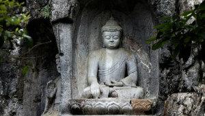 释迦牟尼一生游行教化的区域,是哪些地方?
