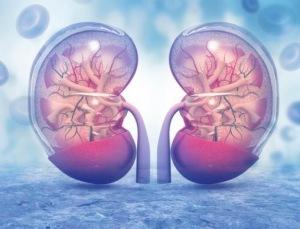 肾功能衰竭治疗费用  肾功能全衰竭期怎么治疗