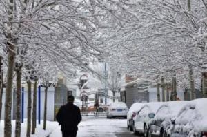 内蒙古呼伦贝尔四月飘雪