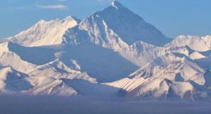 我国在珠峰6200米地带成功采集到植物种子