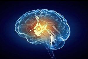 大脑植入电极 西班牙一盲人成功识别形状和文字