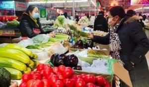 菜比肉贵?透视近期蔬菜涨价背后