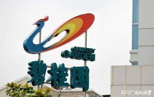 一石激起千层浪——碧桂园等民营企业的创新发展之举引发众多热议与思考