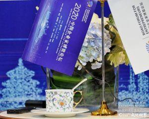 美轮美奂 守正创新——淄博华光国瓷以无可抗拒的艺术魅力点亮2020中国企业家博鳌论坛