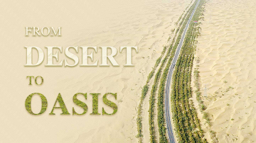 From desert to oasis