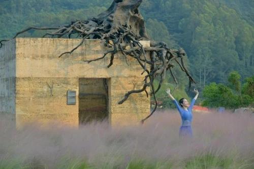 莫道明:玉英谷,北回归线上的大地艺术花园