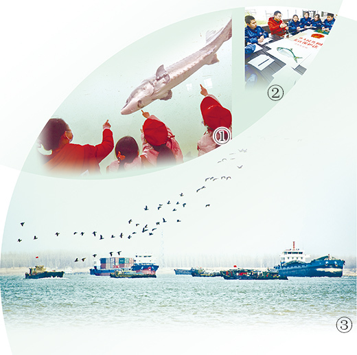 《中华人民共和国长江保护法》于3月1日起正式施行 用法治力量守护长江