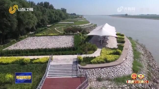 两会声音丨住鲁代表委员谈黄河流域生态保护和高质量发展:加强保护,发展产业,弘扬黄河文化