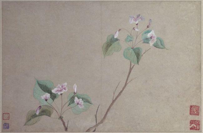 《花卉图》册之海棠,明,文俶绘,纸本,设色,每开纵27.8厘米,横42.8厘米。