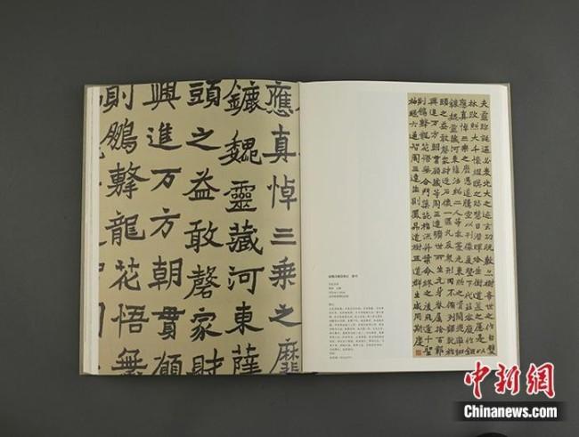 《徐悲鸿全集》书法卷内文。出版方供图