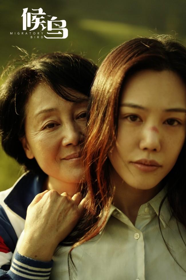 """王姬携《候鸟》归来 李焕英后的又一""""国民妈妈"""""""