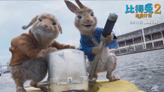 《比得兔2:逃跑计划》特效满分 让可爱渗透到毛发