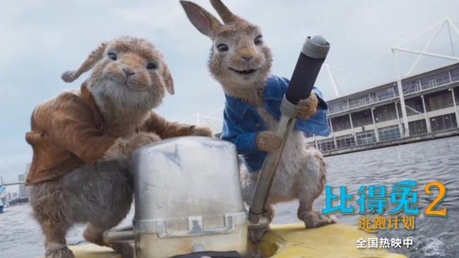 《比得兔2:逃跑计划》端午唯一票房持续上扬影片