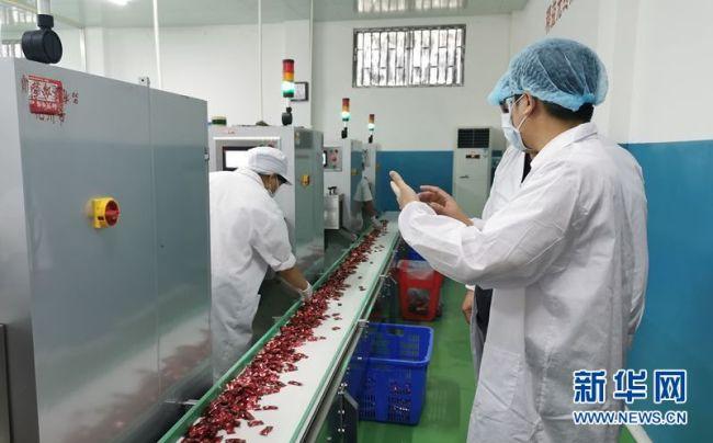 """化州化橘红产品顺利出口新加坡 实现""""零突破"""""""