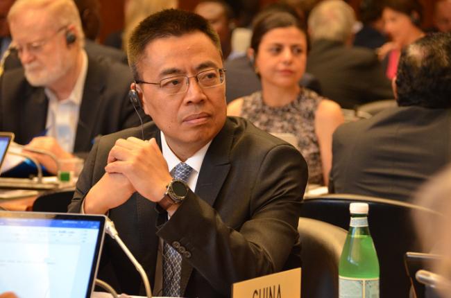 中国赞赏和支持非洲集团等发展中成员提出的世贸组织改革提案