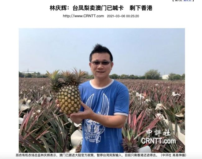 媒体:大陆暂停输入台湾凤梨后 澳门也拒收了