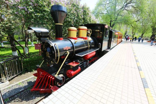 新中国第一条儿童铁路的故事