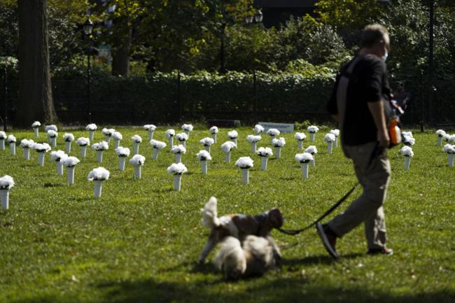 全球连线丨美国纽约:白色瓶花悼念枪支暴力遇难者