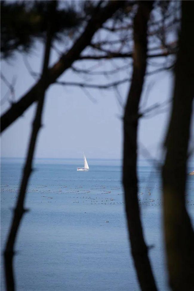 """赴威海刘公岛,过一个""""海盐味""""的初秋小假期"""