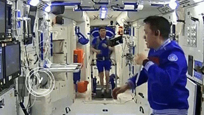 核心舱内最新画面曝光:航天员日常大放送